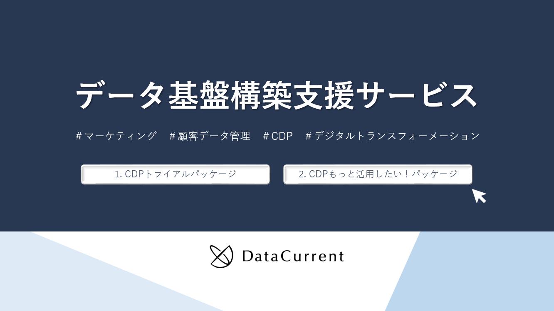 【ダウンロード資料】データ基盤構築支援サービス(CDP/DX/顧客データ管理)